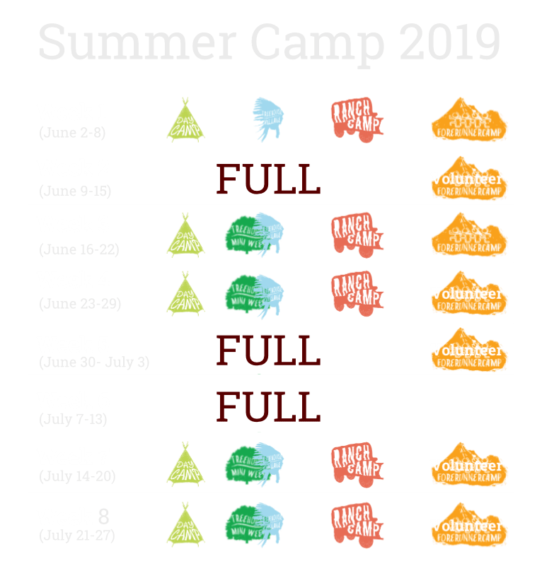 2019 camp date calendar v2